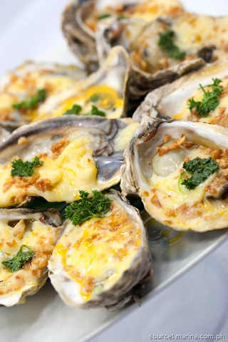 MARINA Oysters and Seafood Restaurant: Most-Loved For 25 Years!